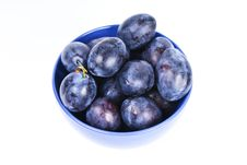 Free Plums Stock Photography - 16207912