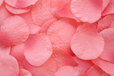 Pink Artificial Rose Petals Royalty Free Stock Photo