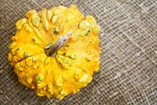 Free Decorative Pumpkin Royalty Free Stock Photos - 16208778