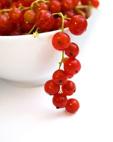 Free Fresh Red Currant On White Bowl Over White Royalty Free Stock Photo - 16209165
