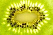 Free Kiwi Fruit Stock Photos - 16209413