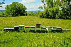Free Beehives In The Fields Royalty Free Stock Photo - 16210115