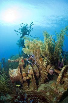 Underwater Shipwreck Stock Images