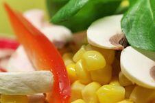 Free Salad Food Still Life Stock Photo - 16210490