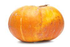 Free Orange Pumpkin Royalty Free Stock Photo - 16212215