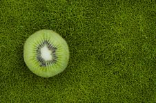 Free Kiwifruit At Rest Stock Image - 16212971