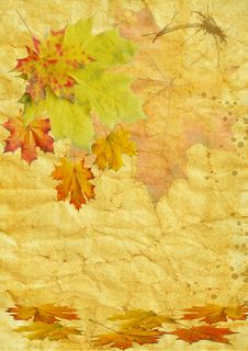 Free Autumn Leaf On Old Paper Stock Photos - 16214563