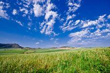 Free Mountainous Green Wheat Field Stock Photo - 16214840