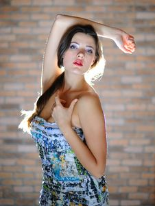 Free Young Sexy Woman With Long Healthy Hair Stock Photo - 16214980