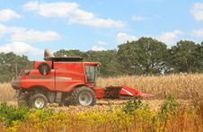 Free Red Combine Royalty Free Stock Images - 16216879