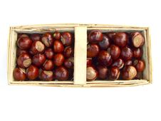 Free Chestnuts In A Bastket Royalty Free Stock Image - 16217456