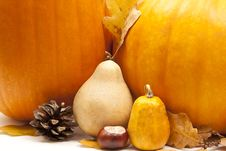Free Pumkins Decoration Stock Photography - 16219472