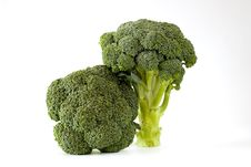 Free Fresh Sprouting Broccoli Royalty Free Stock Image - 16219776