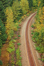 Free Railroad In Forest Royalty Free Stock Photography - 16226787
