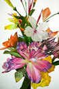 Free Artificial Flowers Royalty Free Stock Image - 16227466