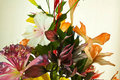 Free Artificial Flowers Stock Photography - 16227472