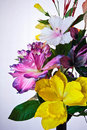 Free Artificial Flowers Royalty Free Stock Photography - 16227477