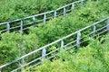 Free Hand Rail Among Bosk Stock Images - 16227554