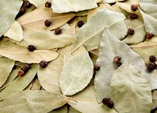 Free Bay Leaves And Black Peppercorns Stock Images - 16221174