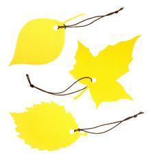 Free Three Leaf-shaped Dockets Royalty Free Stock Image - 16221256