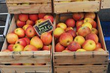 Free Apples Stock Image - 16222181