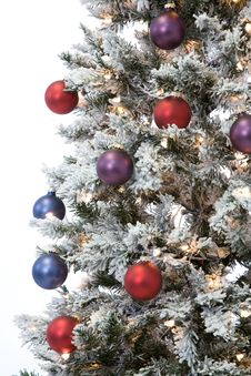 Free Holiday Tree Royalty Free Stock Photography - 16224057
