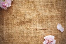 Free Blank Grungy Canvas Background Royalty Free Stock Image - 16225296