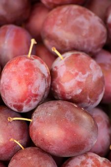 Free Fruit  Plums   Fresh Stock Photos - 16226743
