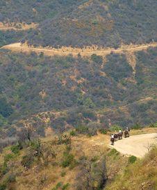 Shot Of Horseback Riding Trails Royalty Free Stock Photography