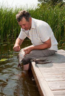 Free Senior Man Scaling Fish Royalty Free Stock Image - 16228796