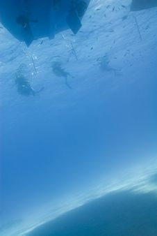 Free Underwater View Of Three Scuba Diver  Silhouettes. Stock Photo - 16229200