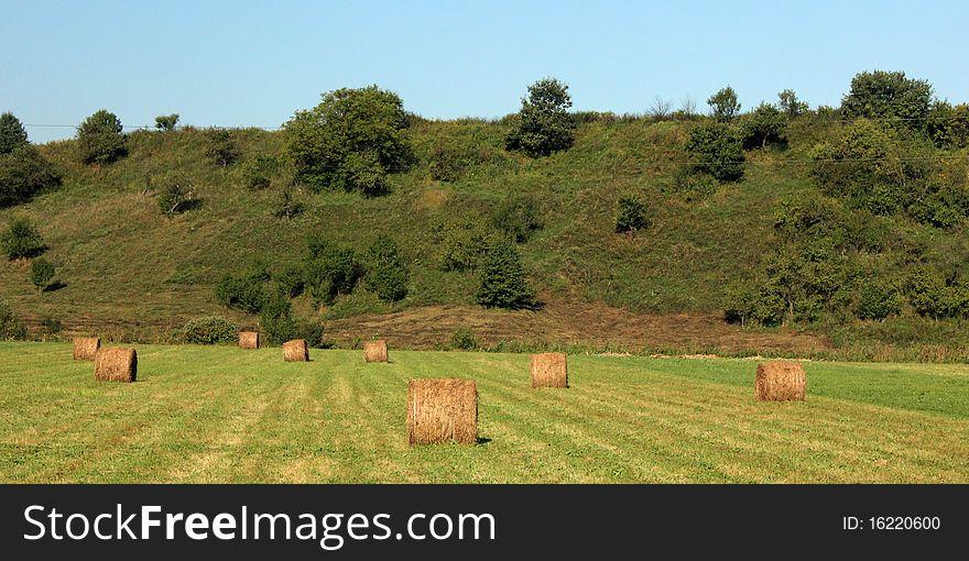 Hay - rolls