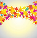 Free Autumn Background. Maple. Royalty Free Stock Photo - 16235495