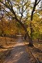 Free Autumn Landscape Stock Photos - 16238183