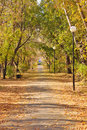 Free Autumn Pathway Stock Photos - 16239553
