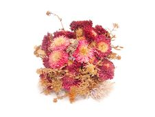 Free Bouquet Of Dry Flowers Royalty Free Stock Photos - 16230438
