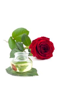 Free Essence Of Roses Stock Photography - 16230662