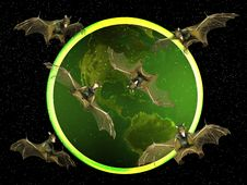 Free Bat Royalty Free Stock Photo - 16231525