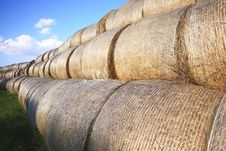 Free Bales Of Hay Royalty Free Stock Photos - 16232068
