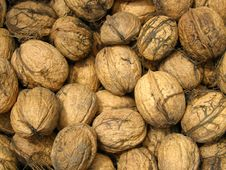 Free Walnuts Detail Background Royalty Free Stock Image - 16234476