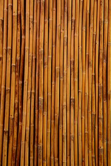 Free Close Up Of Bamboo Wall Stock Images - 16235494