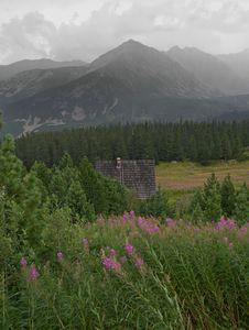 Free Mountain Pasture Royalty Free Stock Photos - 16235948