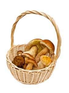 Free Small Basket With Mushrooms Stock Images - 16236104