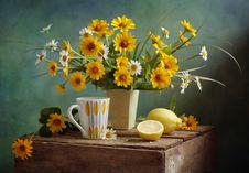 Free Lemon Tea Royalty Free Stock Images - 16237099