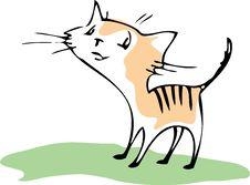 Free Cat Royalty Free Stock Photo - 16237385