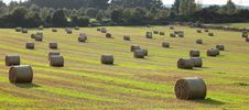 Hay Bales. Stock Photo