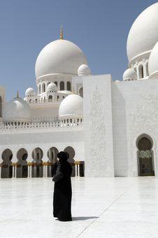Free Abu Dhabi Sheikh Zayed Mosque Royalty Free Stock Photo - 16238825