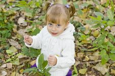 Free Girl In Autumn Park Royalty Free Stock Images - 16239049