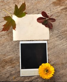 Blank Photo Frame Stock Photo