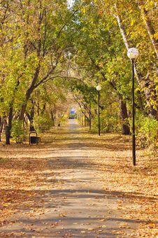 Free Autumn Pathway Stock Photos - 16239553